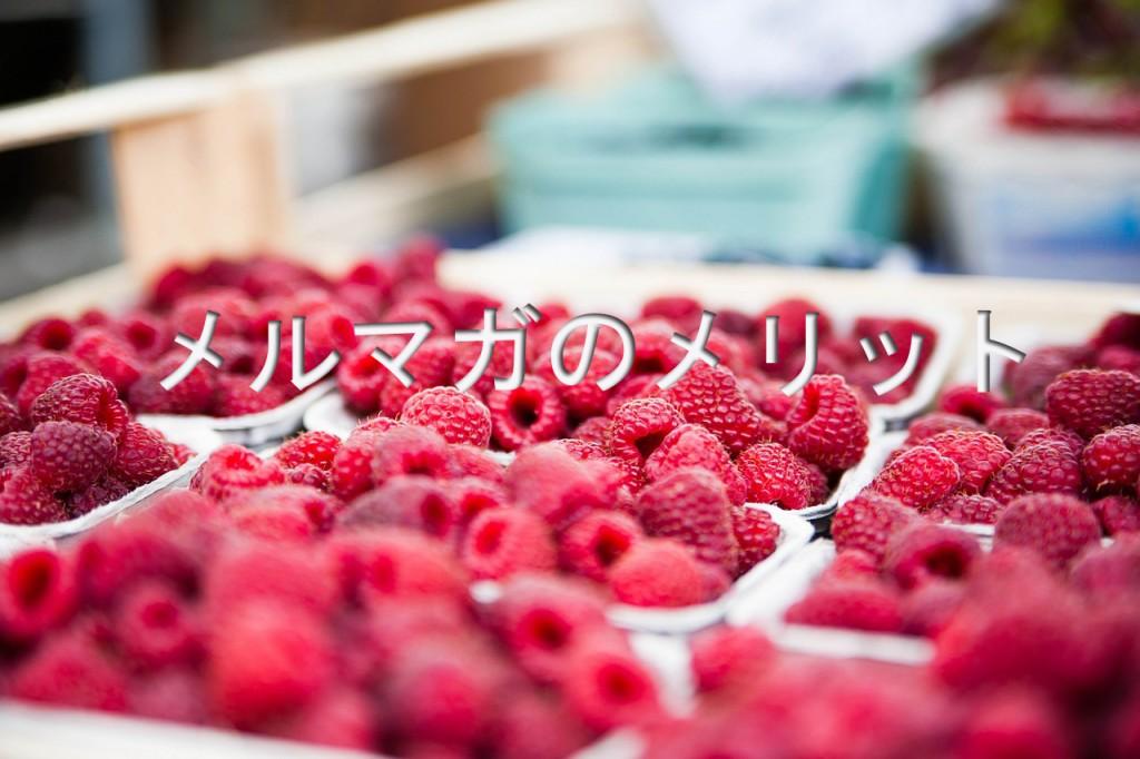 raspberries-422979_12801