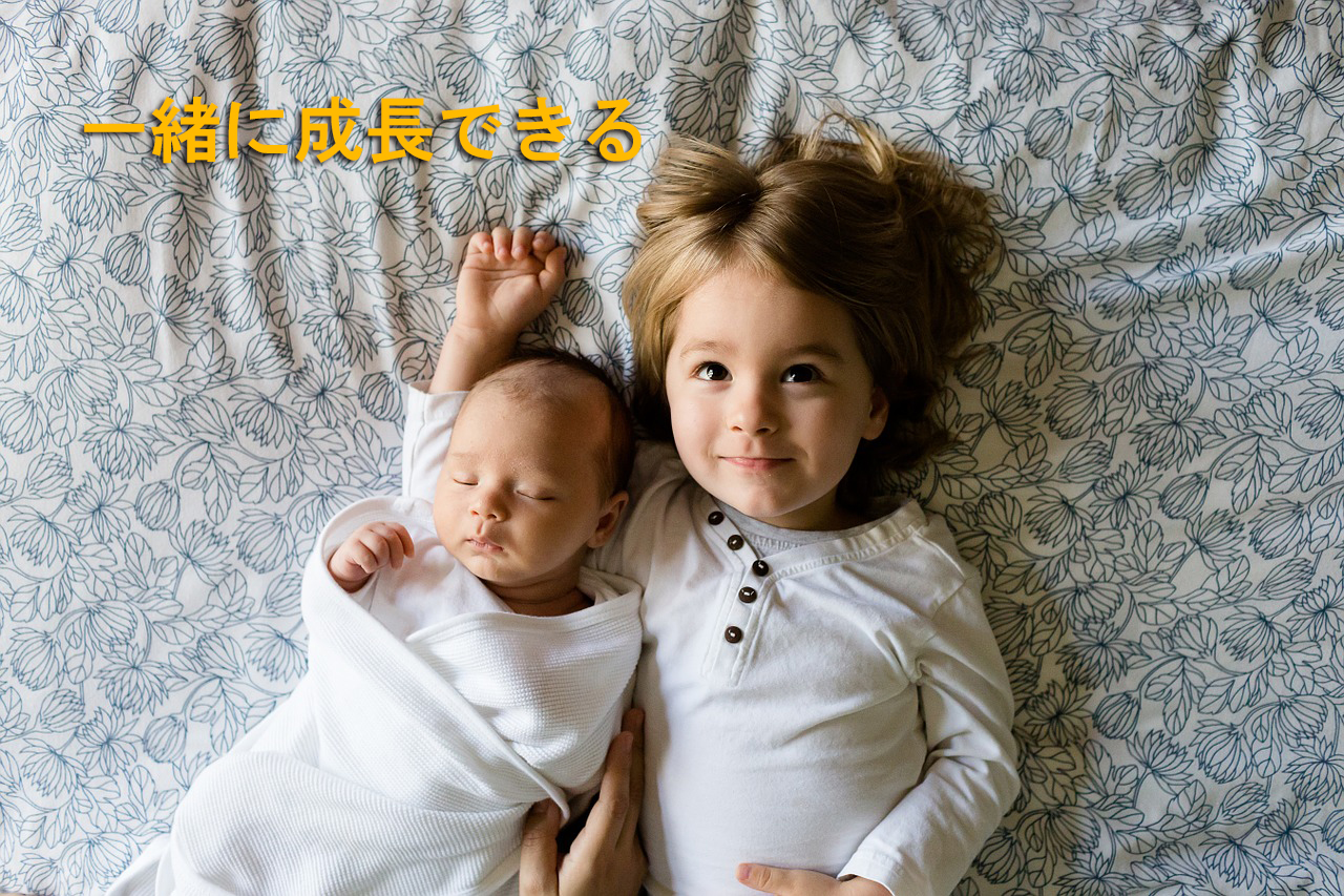 brothers-457237_12801